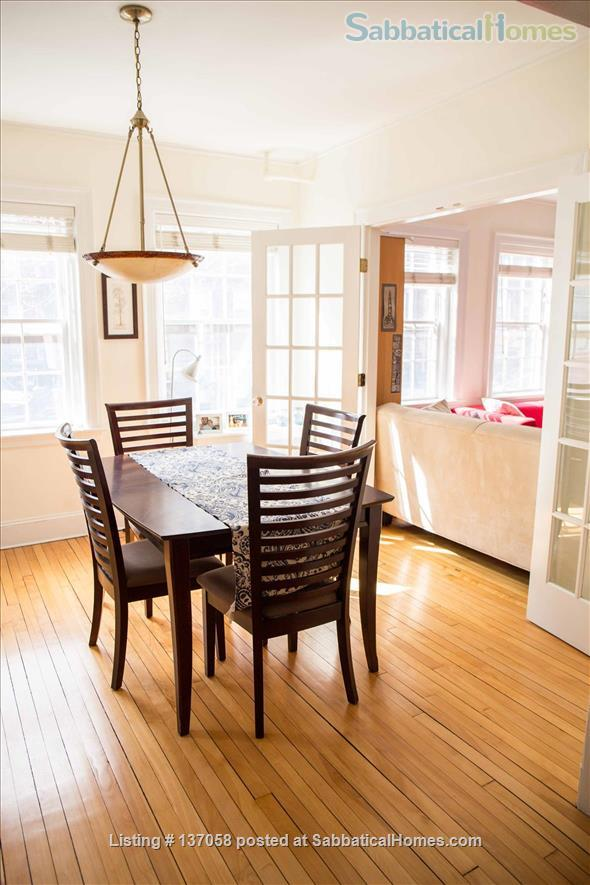 Beautiful furnished large 1br near Harvard Yard, 3 months or a longer term Home Rental in Cambridge, Massachusetts, United States 3