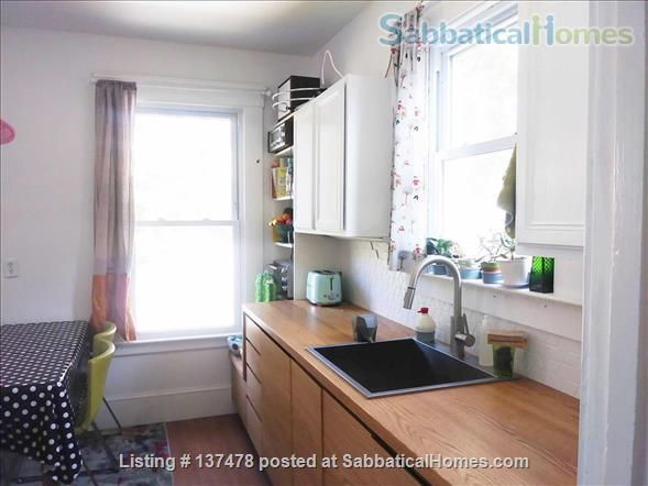Charming Apartment in East Rock - Worthington Hooker School Home Rental in New Haven, Connecticut, United States 4