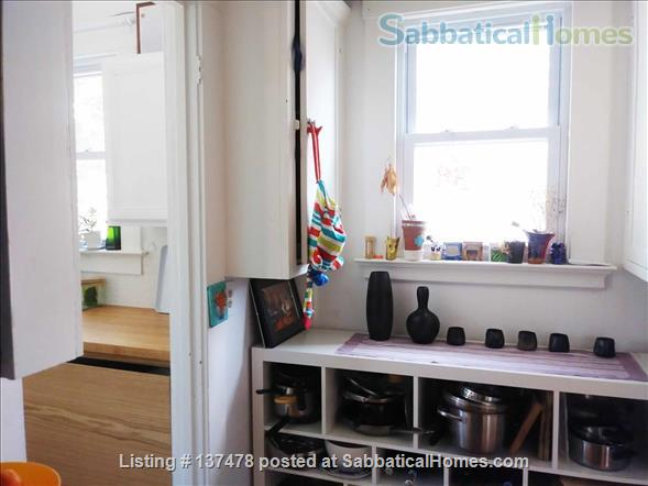 Charming Apartment in East Rock - Worthington Hooker School Home Rental in New Haven, Connecticut, United States 5