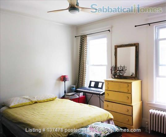 Charming Apartment in East Rock - Worthington Hooker School Home Rental in New Haven, Connecticut, United States 6