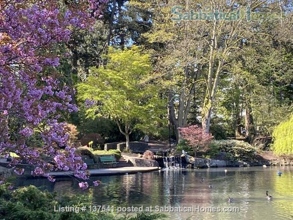 Luxury West Coast modern, furnished  1 bdrm suite, MONTHLY Rental  -  Beautiful walk to Ocean, Cook Street Village, Beacon Hill Park and to DT Victoria. Home Rental in Victoria, British Columbia, Canada 8