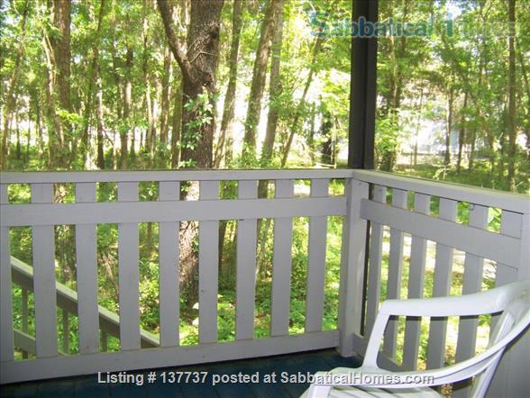 Tranquil cozy furnished townhome Home Rental in Gainesville, Florida, United States 0