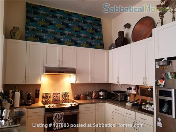 Modern, beautiful, convenient 1 BR apartment in the heart of the nation's capital Home Exchange in Washington, District of Columbia, United States 0