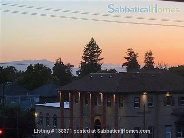 Gorgeous Home Close to Everything in Berkeley Home Rental in Berkeley, California, United States 8