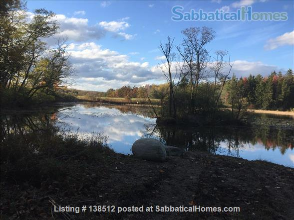 Beautiful Country Home near Cornell, Ithaca College, HWS Home Rental in Trumansburg, New York, United States 9
