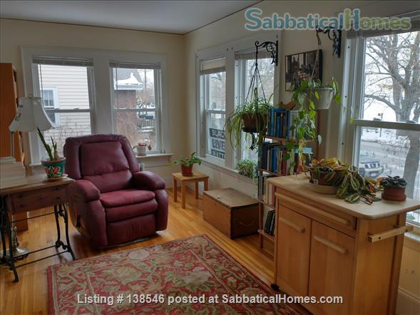 Beautiful Room on Bus Line Direct to Harvard Square Home Rental in Watertown, Massachusetts, United States 4