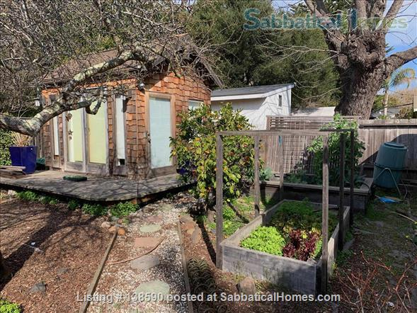 4 BR family home, near beach, UCSC, and downtown Santa Cruz Home Rental in Santa Cruz, California, United States 9