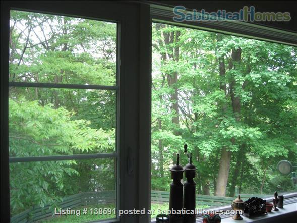 Beautiful 3 BDR, 2 bath, Brookline (Coolidge Corner) Home Rental in Brookline, Massachusetts, United States 3
