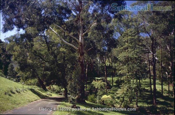 Beautiful home on 6 acres of native gardens in the Dandenong Ranges 30 minutes from Monash Home Exchange in Upwey, VIC, Australia 2