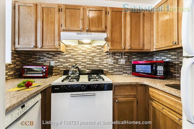 Harlem Jewel Home Rental in New York, New York, United States 3