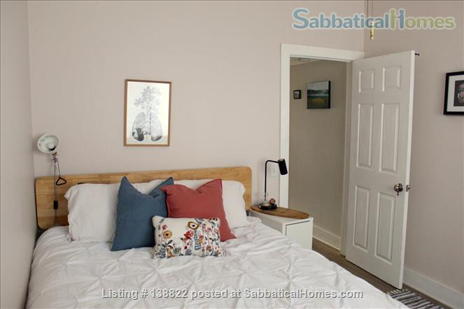 Little Jungle in North Park, perfect for SDSU or USD. Home Rental in San Diego, California, United States 9