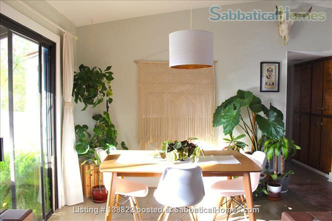 Little Jungle in North Park, perfect for SDSU or USD. Home Rental in San Diego, California, United States 0