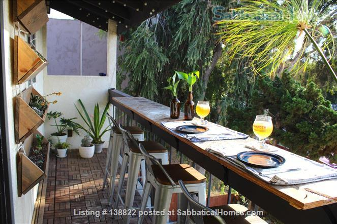 Little Jungle in North Park, perfect for SDSU or USD. Home Rental in San Diego, California, United States 5