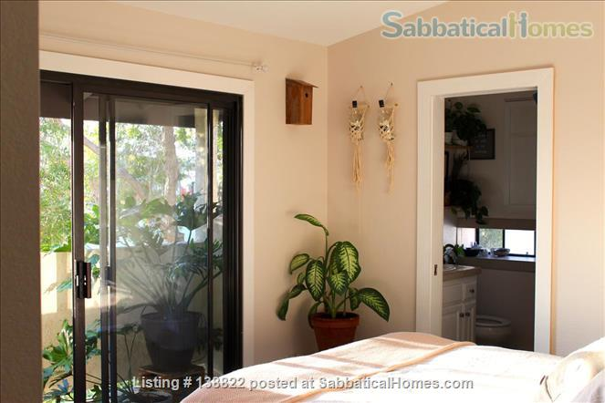 Little Jungle in North Park, perfect for SDSU or USD. Home Rental in San Diego, California, United States 6