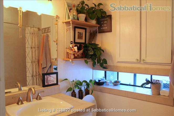 Little Jungle in North Park, perfect for SDSU or USD. Home Rental in San Diego, California, United States 8