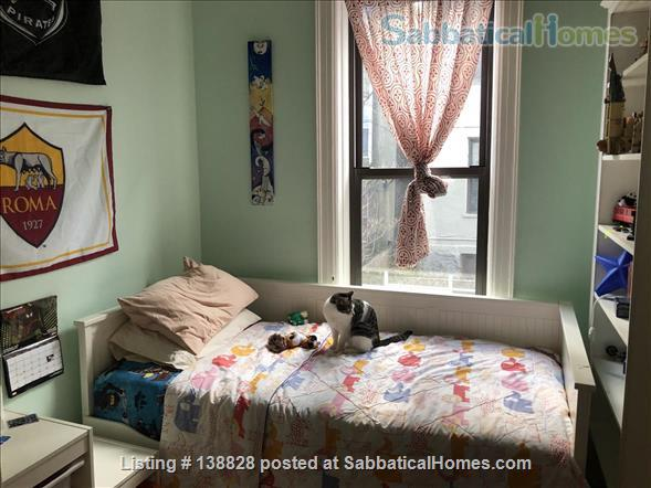 Beautiful Crown Heights Duplex for Rent, Jan 1 - June 1 2021 Home Rental in Crown Heights, New York, United States 9