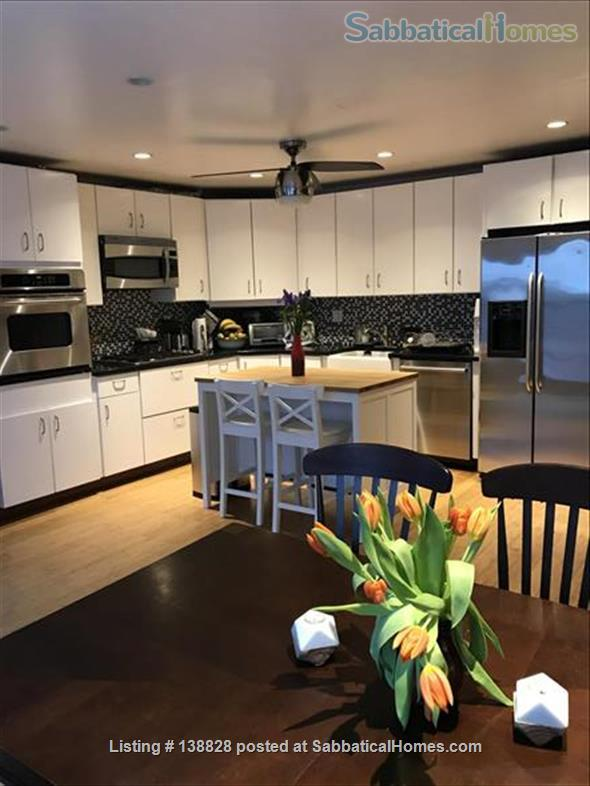 Beautiful Crown Heights Duplex for Rent, Jan 1 - June 1 2021 Home Rental in Crown Heights, New York, United States 3