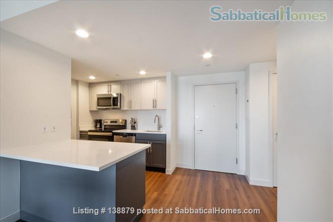 Furnished & Spacious Cambridge 1 Bedroom Apt - Nearby All Major Universities Home Rental in Cambridge, Massachusetts, United States 2