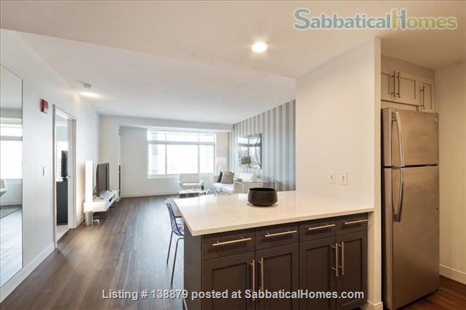 Furnished & Spacious Cambridge 1 Bedroom Apt - Nearby All Major Universities Home Rental in Cambridge, Massachusetts, United States 3