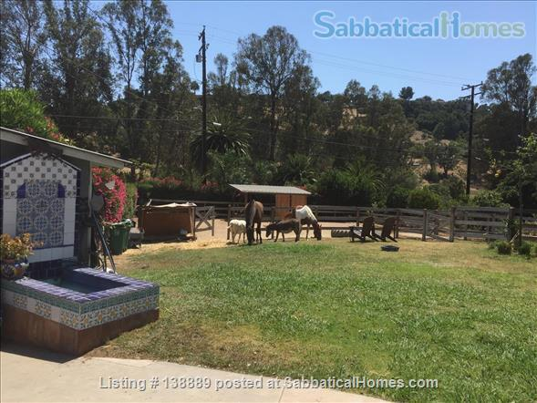Fancy ranch home in the heart of SB with pool and horses Home Rental in Goleta, California, United States 1