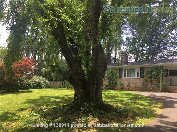 Cherry Tree House - 3br Centrally Located, Utilities Included Home Rental in Charlottesville, Virginia, United States 1