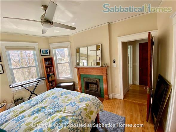 Light + Airy Home for Rent Near Harvard Home Rental in Cambridge, Massachusetts, United States 2