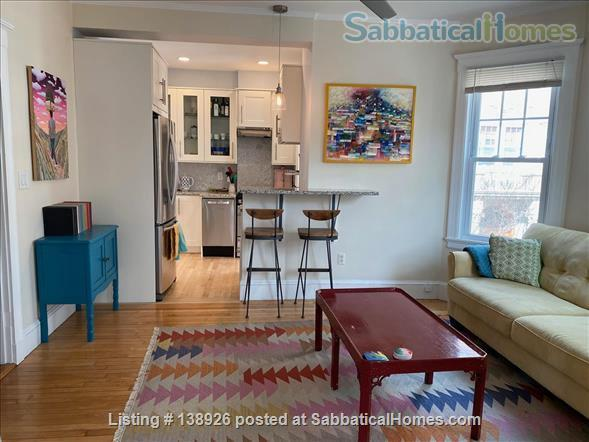 Light + Airy Home for Rent Near Harvard Home Rental in Cambridge, Massachusetts, United States 3