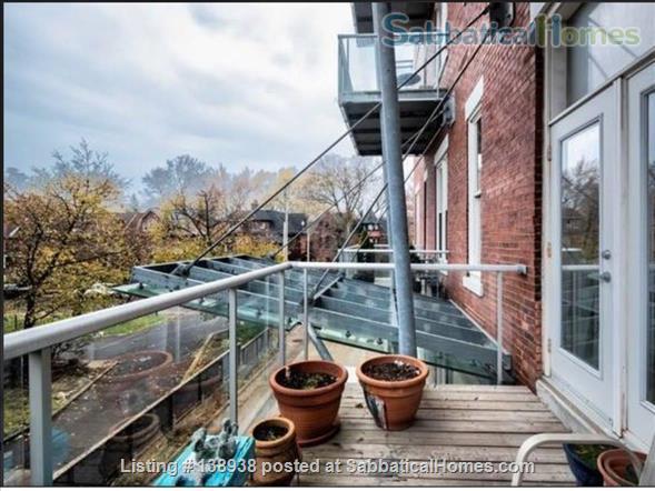 1 Bedroom Studio Apartment in Central Chic Loft Building Home Rental in Toronto, Ontario, Canada 1