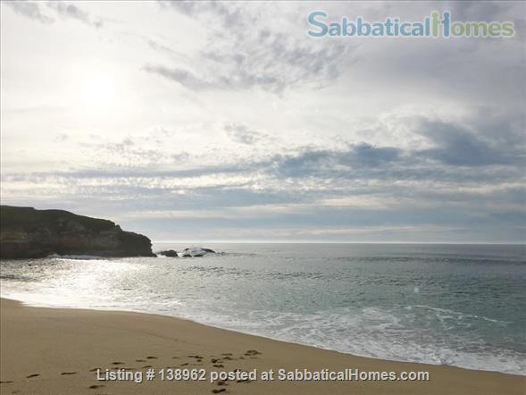 Ocean-view suite w/ porch, walk to beach & nature Home Rental in Montara, California, United States 9