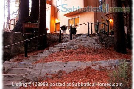 Redwood Retreat Home Rental in Berkeley 4