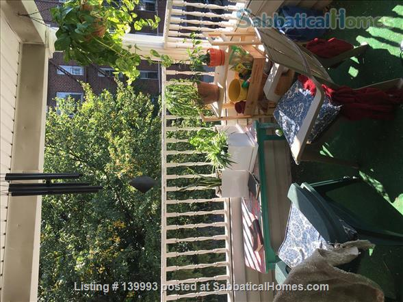 Large front room in Kensington (Brooklyn) Home Rental in Brooklyn, New York, United States 4