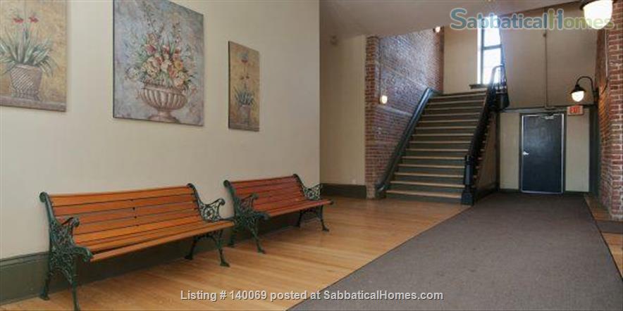 1.5 Bedroom Luxury Loft Home Rental in Ottawa, Ontario, Canada 0