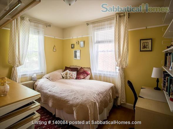 DC city living in a quiet neighborhood: Three-story charming Cape Cod  along tree-lined street  Home Rental in Washington, District of Columbia, United States 4