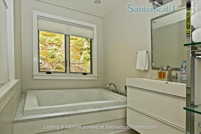 Gorgeous Contemporary Northampton MA Home Rental in Northampton, Massachusetts, United States 4