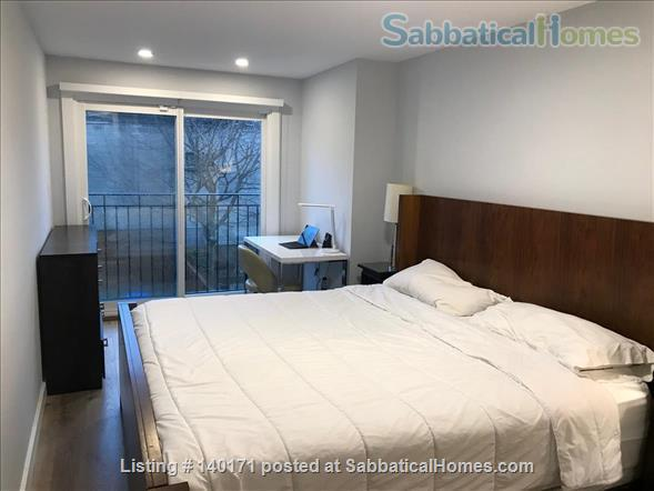 3-Bedroom Renovated Home, Downtown @ Annex steps from UofT, Hospitals, Transit, School Home Rental in Toronto, Ontario, Canada 8
