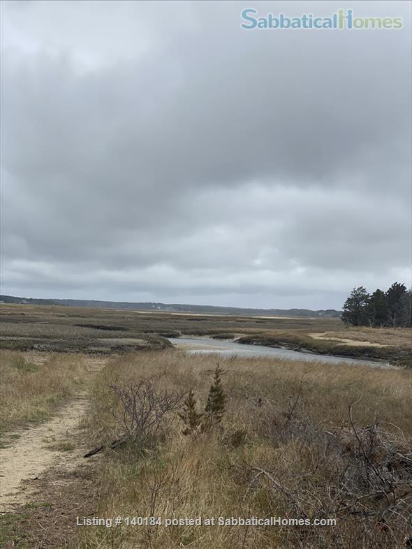 Cape Cod Marsh/Waterfront Writer's/Artist's Secluded Home Home Rental in Eastham, Massachusetts, United States 9