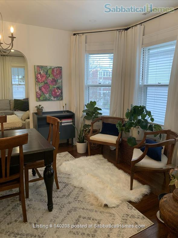 Furnished Apartment Available Near Tufts, Lesley, Harvard Home Rental in Somerville, Massachusetts, United States 5