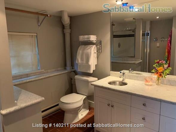 Furnished Sunny Studio to Rent Home Rental in West Vancouver, British Columbia, Canada 3