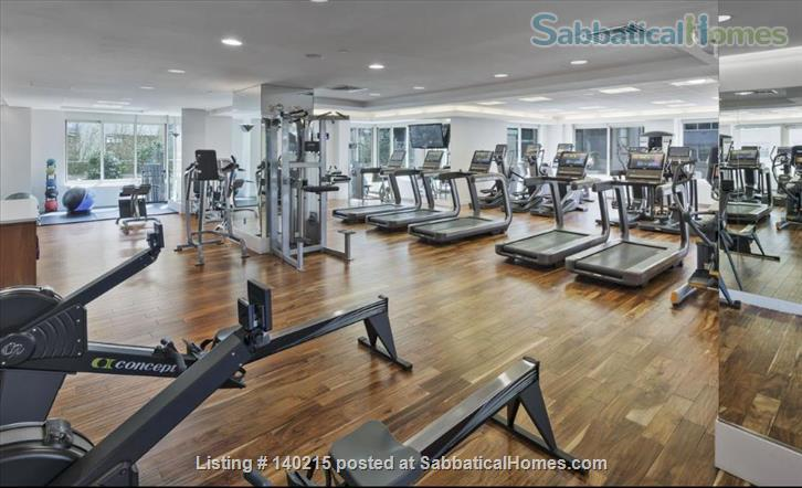 One bedroom Apartment in a luxury building in Midtown from June 1 to October 31 (possible to renewing the lease) Home Rental in New York, New York, United States 0