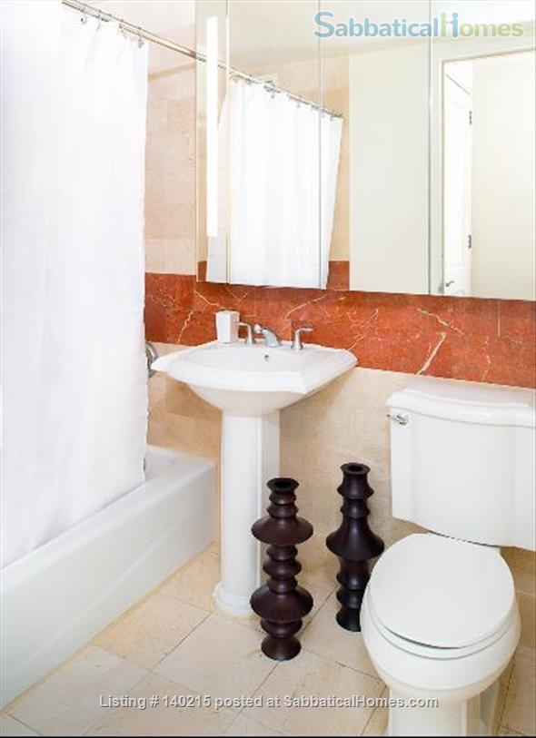 One bedroom Apartment in a luxury building in Midtown from June 1 to October 31 (possible to renewing the lease) Home Rental in New York, New York, United States 7