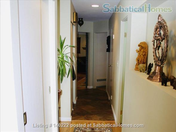 Walking Distance to Cornell - In the Heart Of Cayuga Heights, Ithaca Home Rental in Ithaca, New York, United States 7