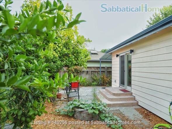 Garden studio in Santa Cruz, CA Home Rental in Santa Cruz, California, United States 1