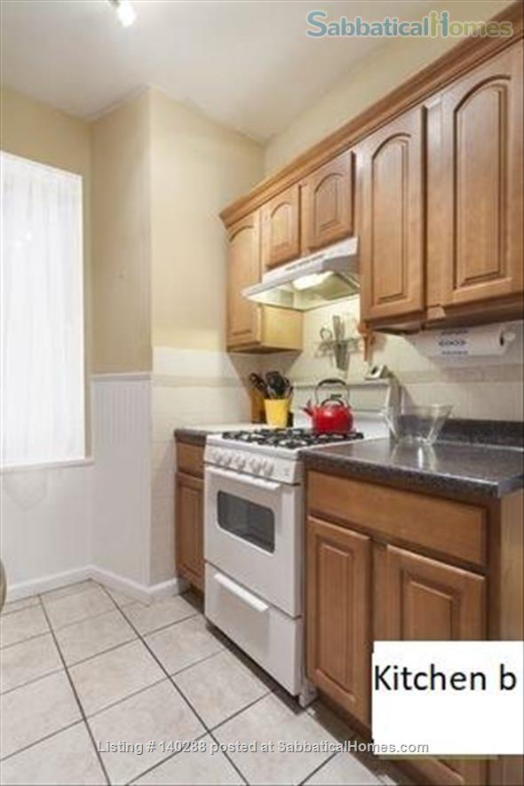 The perfect 1 Bedroom Apartment in East Village Home Rental in New York, New York, United States 3
