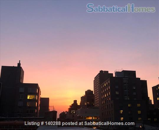 The perfect 1 Bedroom Apartment in East Village Home Rental in New York, New York, United States 6