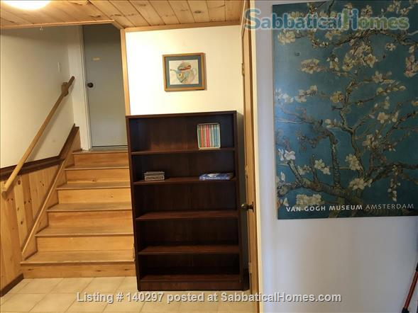 EXTRAORDINARY APARTMENT NESTLED IN WOODS BY COVER NEAR LONG BEACH IN HISTORIC PHIPPSBURG MAINE Home Rental in Phippsburg, Maine, United States 8