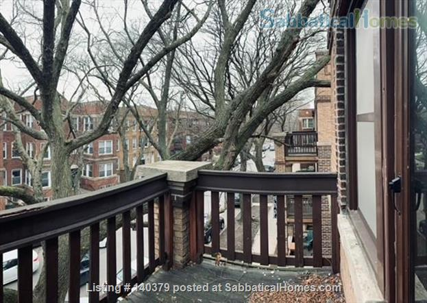 On-campus one bedroom apartment in Hyde Park Home Rental in Chicago, Illinois, United States 5