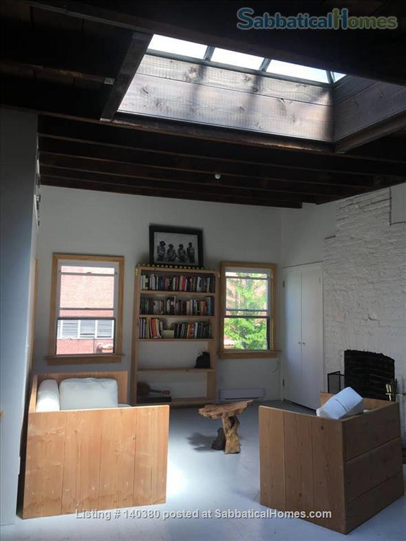 Airy 1 bedroom  in Vinegar Hill townhouse Home Rental in Vinegar Hill, New York, United States 3
