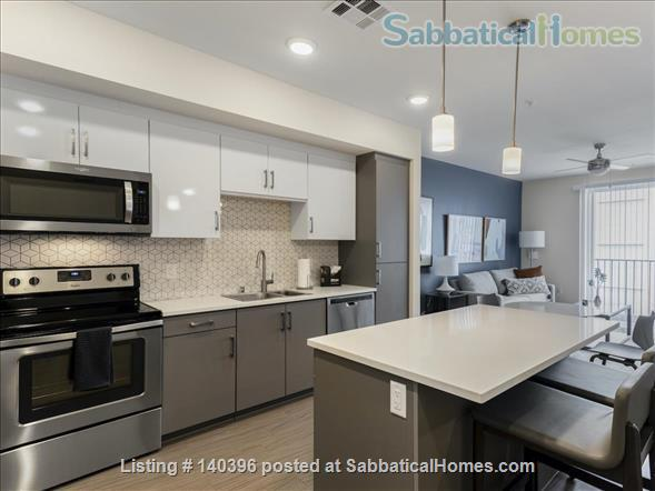 Landing Furnished Apartment at Downtown LA | Stylish New Apartment Near USC | Gym&Pool, Washer&Dryer, Rooftop Deck, Gaming Room and Full Kitchen! Home Rental in Los Angeles, California, United States 7