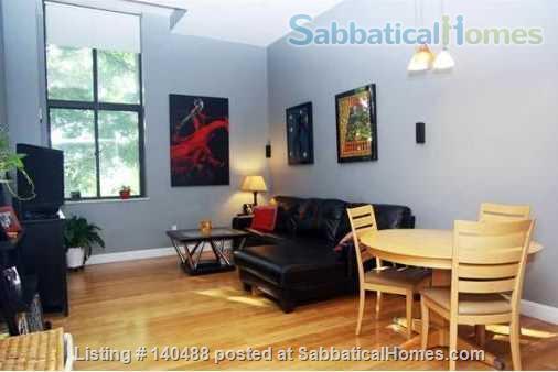 Sunny Spacious 2 BR in Boston Home Rental in Boston, Massachusetts, United States 1