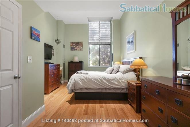 Sunny Spacious 2 BR in Boston Home Rental in Boston, Massachusetts, United States 0